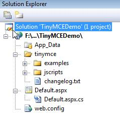 Using TinyMCE Editor in ASP.Net